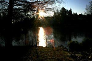 parkweiher kronberg